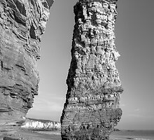 Lot's Wife sea-stack by Great North Views