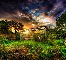 Greenhouse Effect by Yhun Suarez
