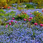 Spring Floral Carpet... by Carol Clifford