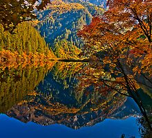 Autumn Reflection in Mirror Lake, Jiuzhaigou by Daniel  Chui