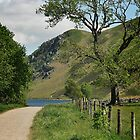 Tree at Ennerdale Water by brianhardy247