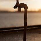 A Stockton Tap by Daniel Rankmore