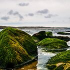Mossy Boulders by Paul Howarth