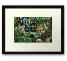 Japanese Gardens. Framed Print