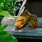 CHIPPY WITH CORNCOB by cammisacam