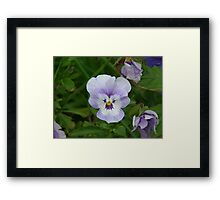 Double Layer Framed Print