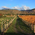 Farming, forestry and fine wines by Duncan Cunningham