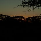 Dawn creeping in! by Toucan79
