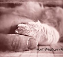 Best friends are forever by Scott Mitchell