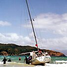Aground, Great Barrier Island - Part 2. ..........! by Roy  Massicks