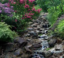 Waterfall In Summer by Carolyn  Fletcher