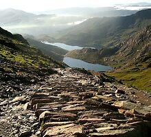 Snowdon Path by Tony Dewey