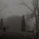 Botanic Gardens in Fog by Andrew  Makowiecki