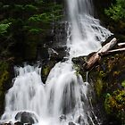 Glacier Fresh Waterfall by Tori Snow