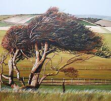 Windswept by Paula Oakley