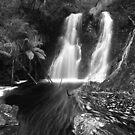 """Hogarth Falls"" ∞ Strahan, Tasmania - Australia by Jason Asher"