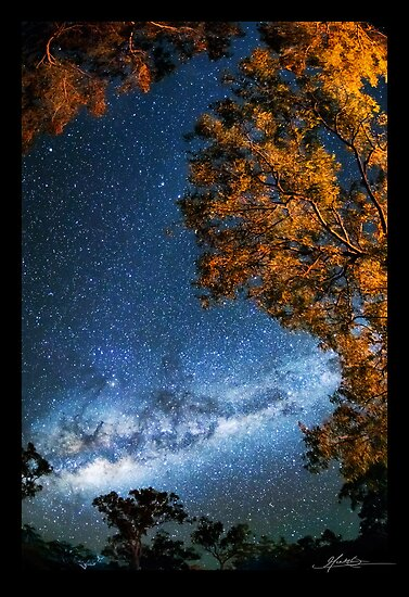 Starry, Starry Skies by Mieke Boynton