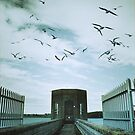 Pitsford Reservoir by Nicola Smith