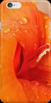 Lily in Orange by aprilann