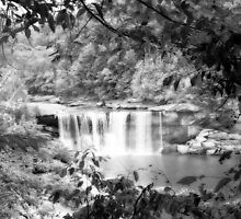 Cumberland Falls IR by Nicole  McKinney