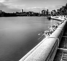 Riverside.. by tracielouise