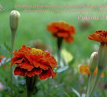 I Believe! by aprilann