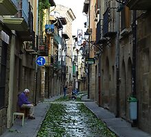 Street in Olite by photoshot44