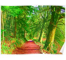 Hockney Path Tribute Poster