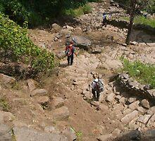 Descending Steps near Tikhedhunga by SerenaB
