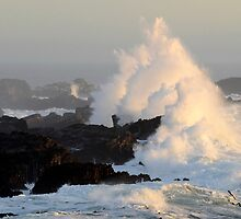 Wave At Salt Point California by Bob Christopher
