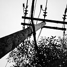 Telephone Wires by niiknaak08