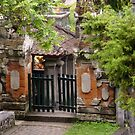 The gate by Karen Stackpole