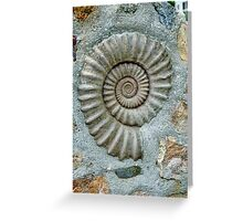A Home For Old Fossils? Greeting Card