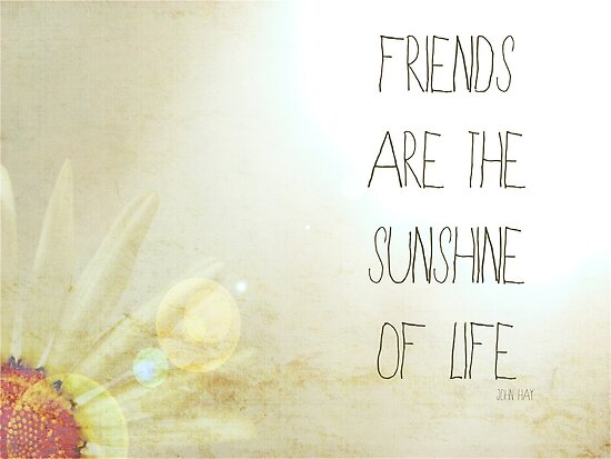 Sunshine & Friendship. by Vintageskies