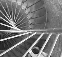 Going Against the Downward Spiral by Mary-Elizabeth Kadlub