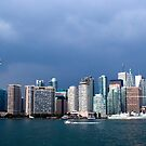  Toronto before storm by Milena Ilieva