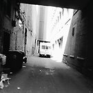 Truck in Alleyway by cudatron