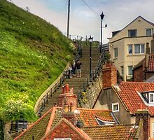 Middle of the Whitby Steps by Tom Gomez