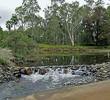 Carnarvon Creek by John Vriesekolk
