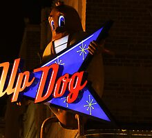 Up Dog by littleoldhag