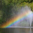 A Rainbow by Teresa Zieba