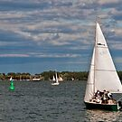 A Perfect Day for Sailing at Harbourfront by Gerda Grice