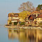 Nernier - Houses along Geneva lake by Patrick Morand