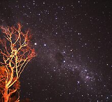 The Mallee Sky by Chris Rowlands