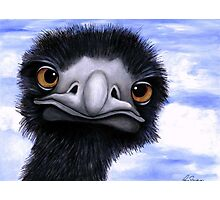 Nosy Emu (6660 viewings as at 15th June 2012) Acrylic painting Photographic Print