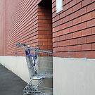 Abandoned Shopping Trolley by Jane McDougall