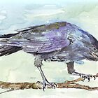 Crows are messengers by Maree Clarkson