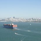 San Francisco Bay Giant by Barrie Woodward