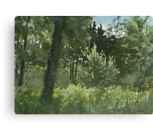 Plein Air 4 Canvas Print