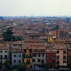 Verona Rooftops by Paul Finnegan